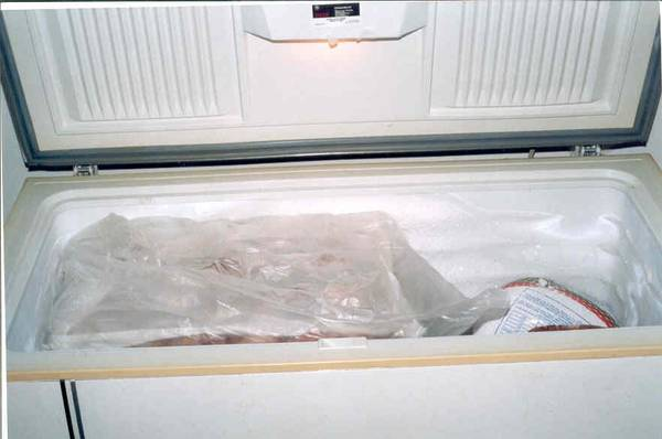 Larger Freezer